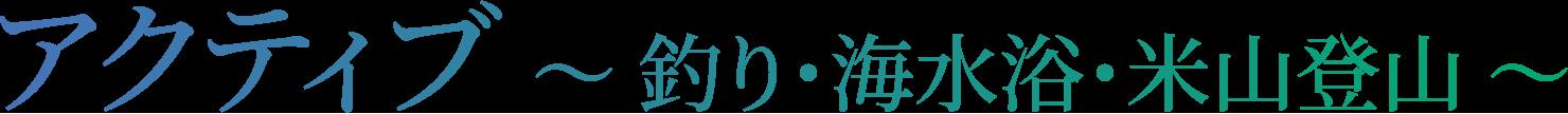 新潟県 上越市 柿崎 岩野屋旅館 アクティブ ~ 釣り・海水浴・米山登山 ~